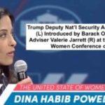 MB Friendly Dina Habib Powell Must Not Become Next UN Ambassador